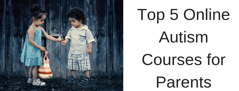 Top 5 Online Autism Courses for Parents