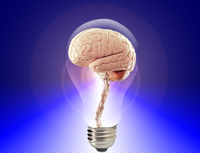 Cognitive Psychology Learning and MemoryCognitive Psychology Learning and Memory