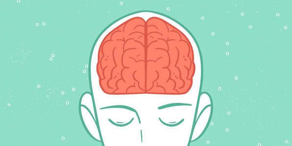 Top Neuroplasticity Online Training Courses by Gregory Caremans- Rewiring Your Brain For Success