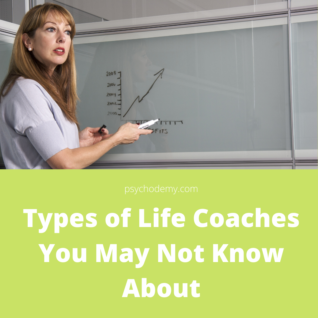 Types of Life Coaches You May Not Know About ,there are different types of life coaches who concentrate on the multiple life coaching areas. A life coach who focuses on finance cannot